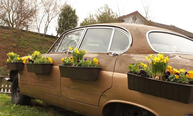 En route pour le printemps!