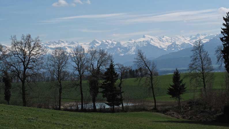 365 x Sempach Panorama sur les Alpes depuis la frontière nord de la commune de Sempach