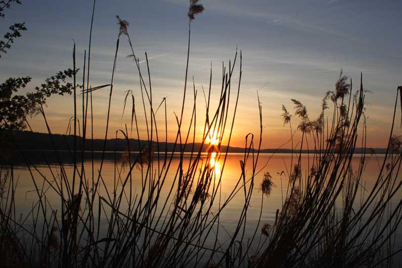 Au soleil couchant (1)